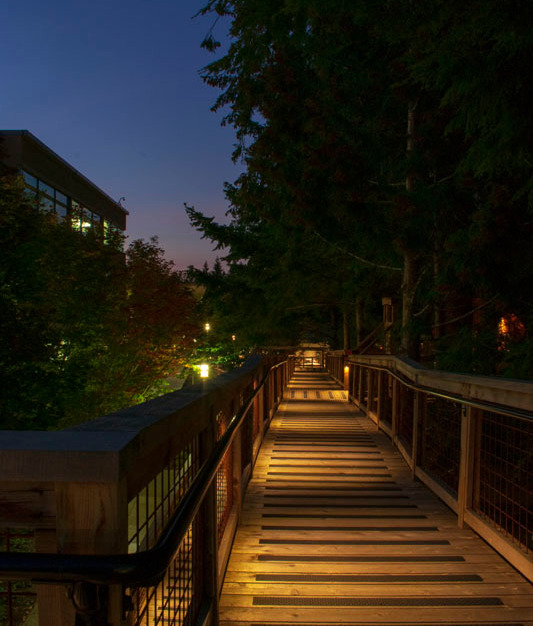 The subtle walkway illumination featuring Klik USA LEDpod's can be easily integrated into the Microsoft Treehouse forest environment in Redmond, Washington.