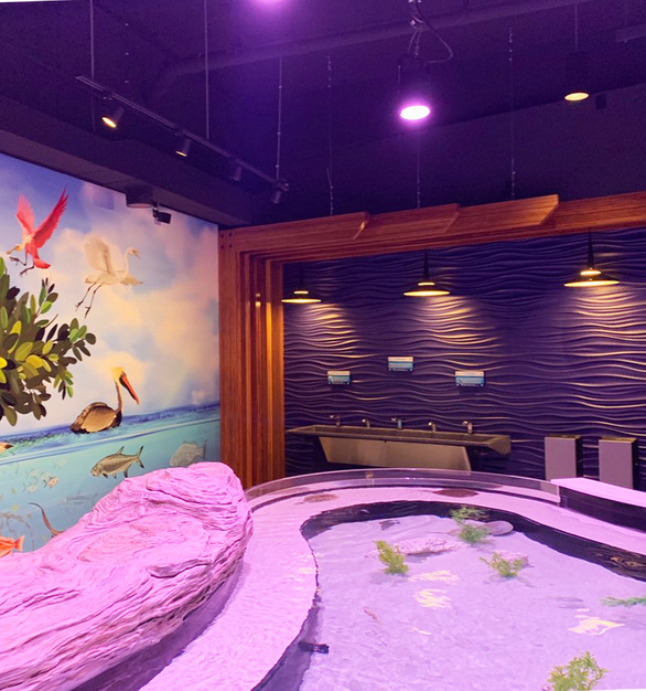 Featured here at the Aquarium of Niagara are Lamboo® Structure™ Bamboo Beams & Members, decorative beams to bring together the environment.