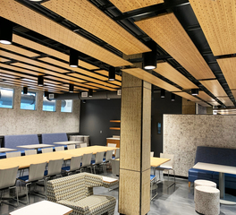 Lamboo Newark Culinary School Acoustic Ceiling Features