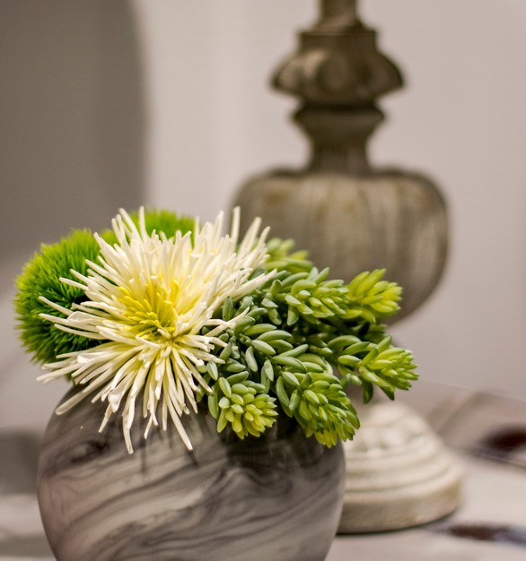 This vase has Green Succulents and they added White Spider Mums for a pop of color.