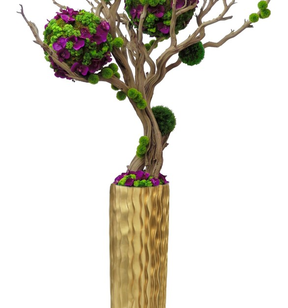 Succulent, orchid, moss, and grass spheres.