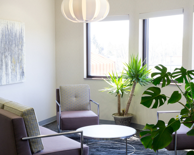 Perfect amount of greenery was incorporated in this bright lounge area designed by Lenae Design.