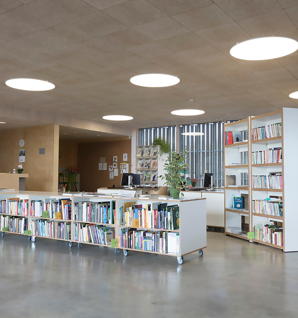 Envirocoustic™ Wood Wool by Acoustical Surfaces is applied to a library to help minimize any noise.