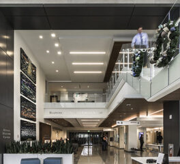 longboard products Baptist md anderson cancer center interior two-story lobby