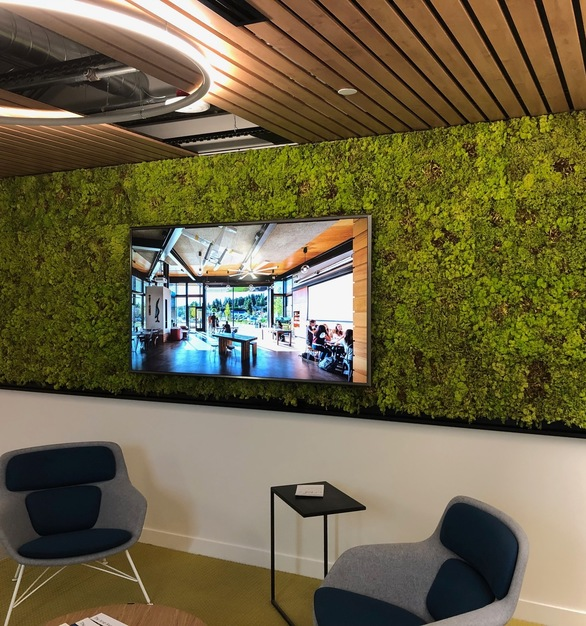 A Hydra wall elevates any office space, while providing an eye-catching accent wall, by Materials Inc.