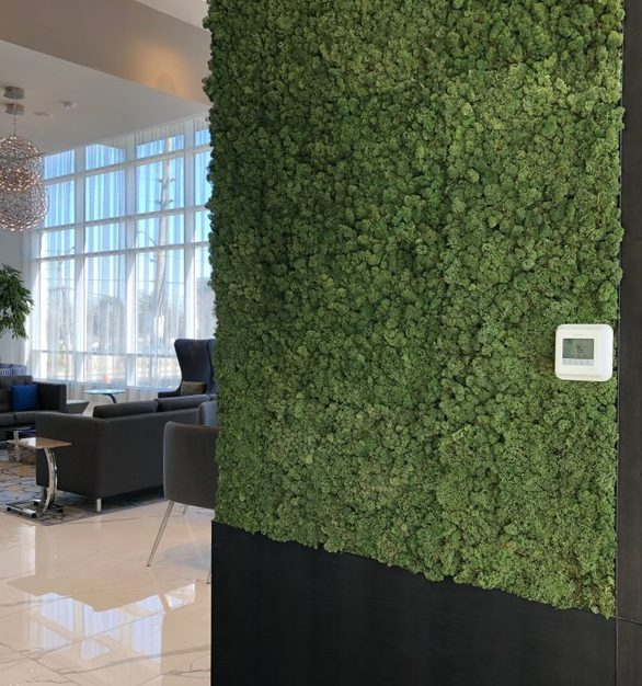 Embassy Suites by Hilton incorporated a Hydra moss wall by Materials Inc, located in Etobicoke, Ontario.