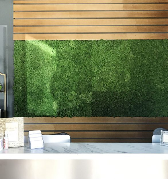 Massage Sway's reception desk greets customers with a beautiful Hydra Wall, by Materials Inc.