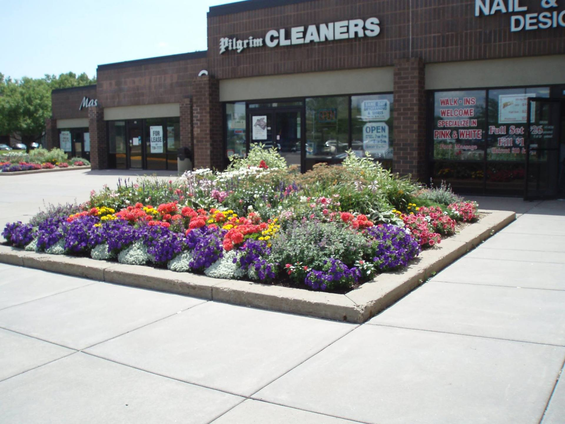 Beautiful and full flower bed designed by McCaren Design.
