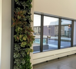 mccaren designs building interior Tray System Greenwall