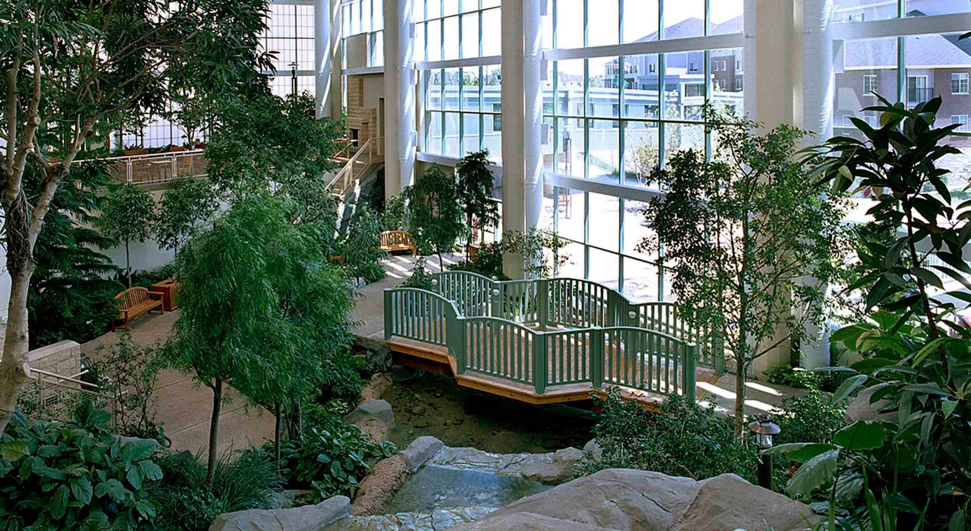 Interior landscaping taken to a whole other level. Shown here is an entire set-up of trees, various plants, and shrubbery which really make this space appear like you're outside.