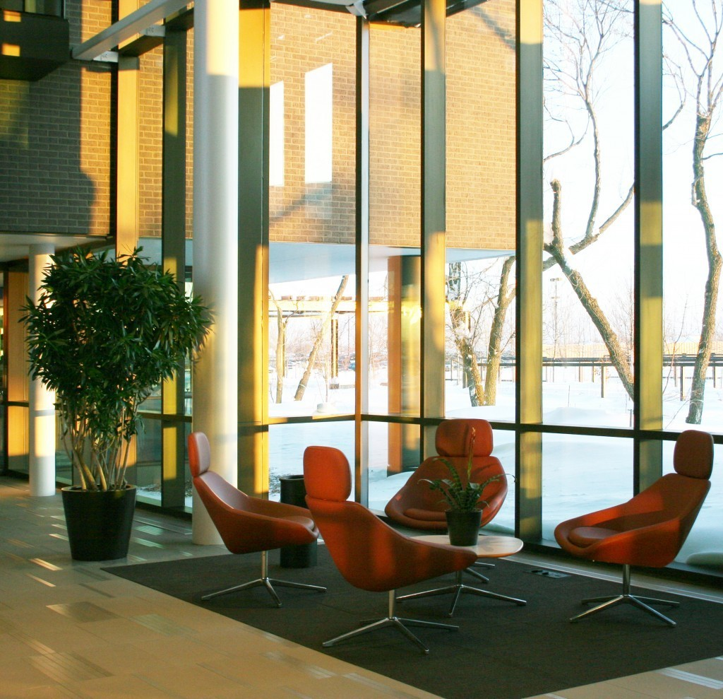 The lobby of the Microsoft office building was looking for something to warm up the space. McCaren Design provided numerous plants and flowers to bring the lobby of this office building to life.