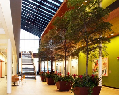 The large building housing the Microsoft offices needed something to help it stand out and take advantage of the space. McCaren Designs, Inc. was able to do so by providing beautiful, tall trees, with flower beds at each base.