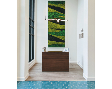A 12' tall preserved moss panel in a custom frame set as a back drop to a reception area as well as an acoustic panel. Photo Courtesy of LBI