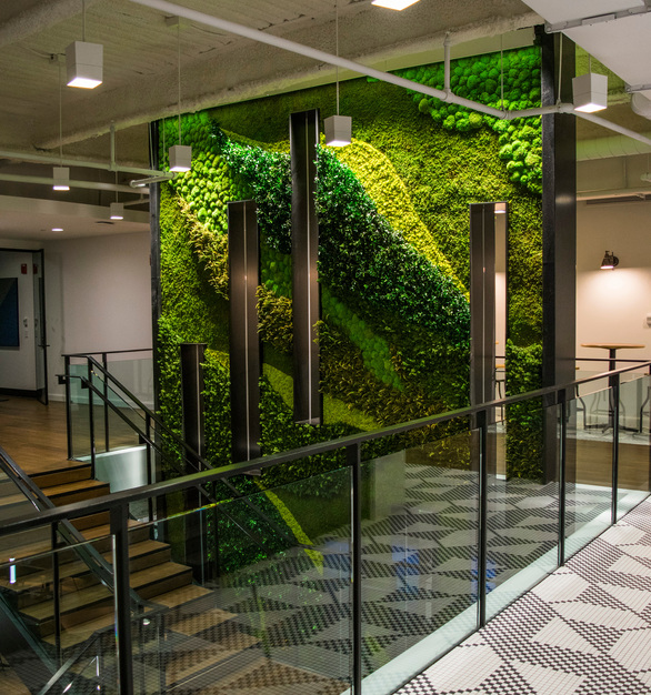 An advantage of preserved plants is that they are maintenance-free and long lasting. They also offer excellent value, as they allow integrating 'Maintenance-free Nature' to interior designs, allowing significant savings from not having a monthly maintenance required for living walls such as gardening and the hardware upkeep.