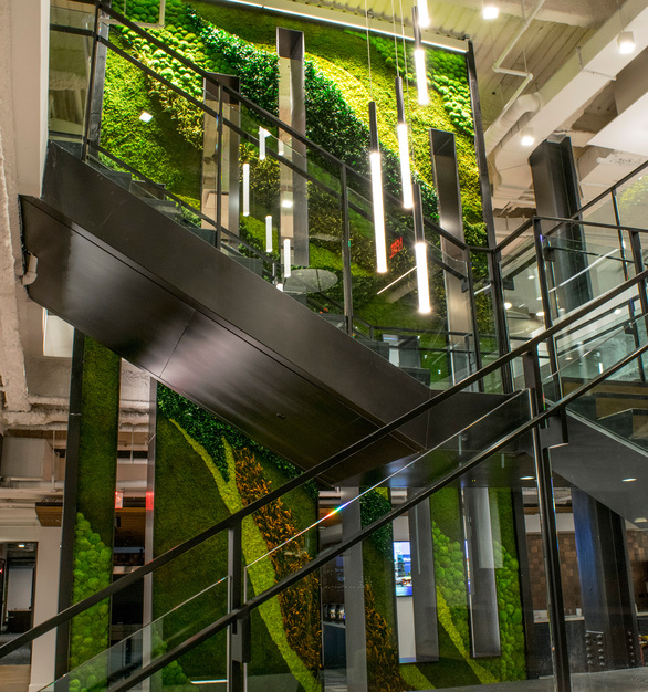 In order to create this vertical garden wall, Garden on the Wall used Eucalyptus, Forest, Ferns and Flower Foliage species over a Flat Moss canvas.   The piece adds greenery to the space to create a light and airy feel in the office space.