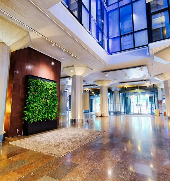 Beatuiful Naava Green Wall in a Hotel Lobby.