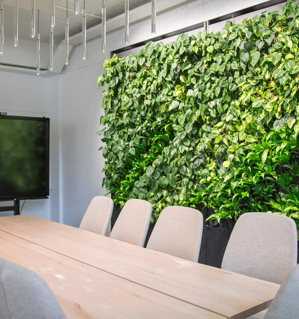 Productivity and creativity flourish in an environment designed according to the principles of biophilic design.