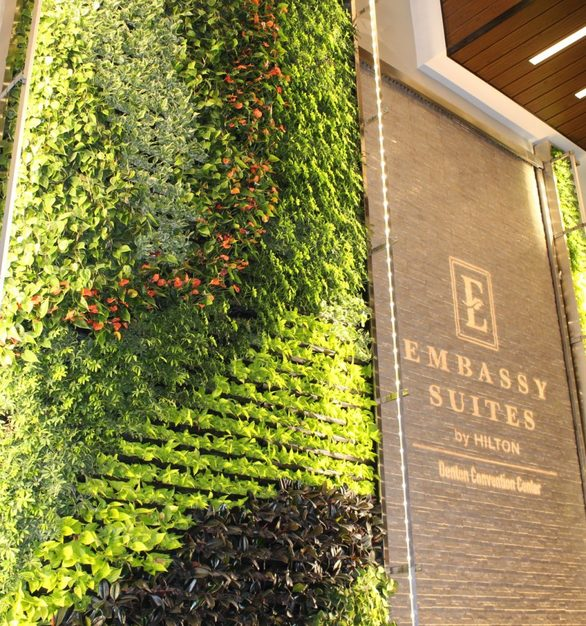 Featured in the lobby of the Embassy Suites by Hilton in Amarillo, Texas is a stunning gSky Versa Wall.