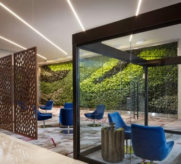 Natura Embassy Suites Amarillo Green Living Wall Lobby Design