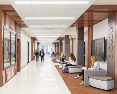 Bright white and wood finishes create a clean and welcoming environment in this interior corridor.