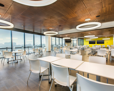 An employee common area and breakroom with a view. The large space needed luminaires that provided ample lighting and OCL's Glowring™ was chosen. These fixtures combine looks and functionality for any interior application.