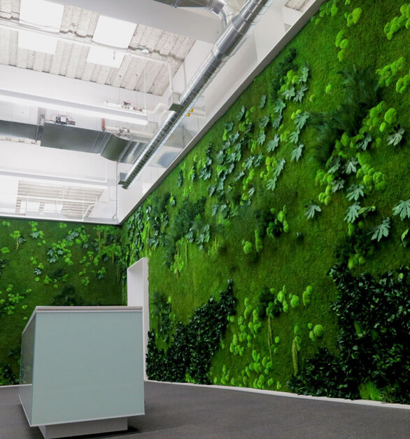 The office reception and entryway area featured a large green wall installation from Garden on the Wall. Elements and foliage selection included: Eucalyptus, Forest, Ferns and Flower Foliage species over a Flat Moss canvas.  Photos courtesy ofRevel Architecture & Design