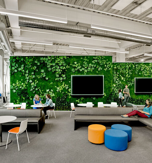 Garden on the Wall helps bring Biophilic Design Aspirations to life while eliminating the hassles of living walls.  Our Installations are created using all Natural Preserved Plants. These long-lasting, Maintenance-free Gardens require no water, misting or irrigation, no light and no soil, but retain a vibrant, fresh-cut look and feel for 7-10 years.  Photos courtesy ofRevel Architecture & Design