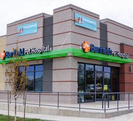 Pet Store Exterior Design