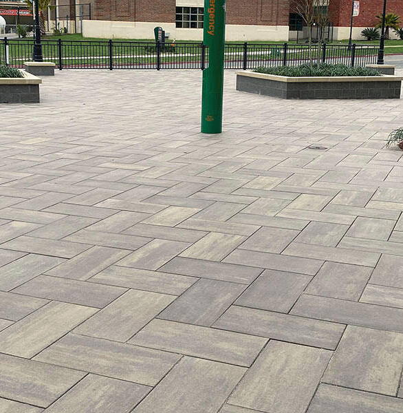 New to the Florida A&M University (FAMU) family, the Center for Access and Student Success (CASS) building features an outdoor courtyard. The porcelain and concrete architectural pavers from Wausau Tile pave the entryway and walkway.
