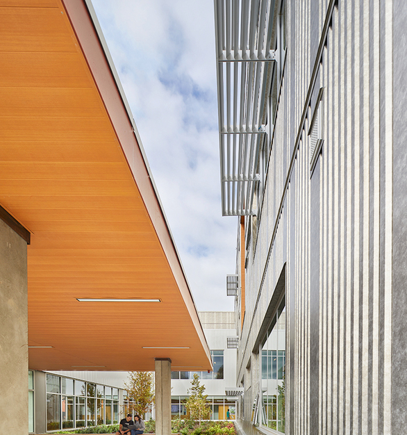 The stunning exterior of Mount Si Highschool features Pure + FreeForms Mercury Glass Gold on the facade and their Carmel Cedar on the soffits. 