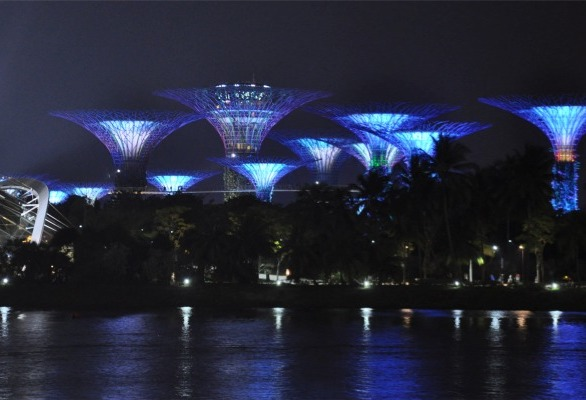 The products were deployed to enhance the iconic and historic buildings around the race track including the Super Trees at the Garden By The Bay, Victoria Concert Hall, Formal Supreme Court and City Hall.