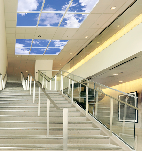 Revelation SkyCeilings are modular virtual skylights available in rectilinear  dimensions including 4' X 6', 4' X 4', 4' X 3, 3' X 3' and 2' X 6' image panels.