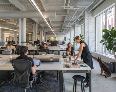 Open workstations help provide an easy collaborative environment for co-workers with the large windows and minimalistic interior design.