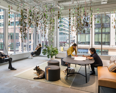 Expansive windows allow ample light into the open office space and help promote a healthy work environment for co-workers, guests, and visitors.