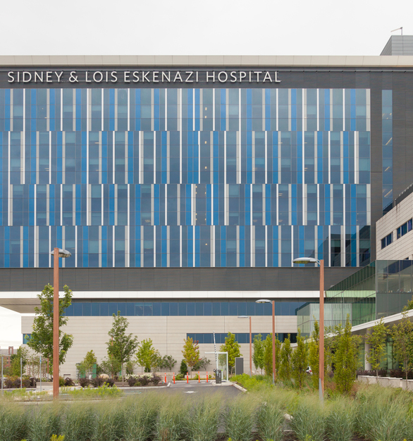 The exterior facade has a modern window design that accentuates the unique aesthetic of the hospital. We provided our Sine Pole to help illuminate the outdoor parking and public spaces.