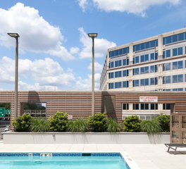 Structura Hyatt Hotel Washington DC Outdoor Swimming Pool Greenery