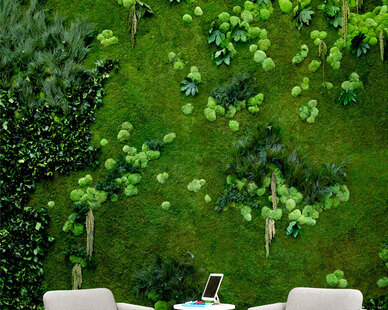 """Garden on the Wall is an award-winning provider of Turn-key """"Maintenance-Free Vertical Garden Installations"""" for Interiors.  Photos courtesy ofRevel Architecture & Design"""