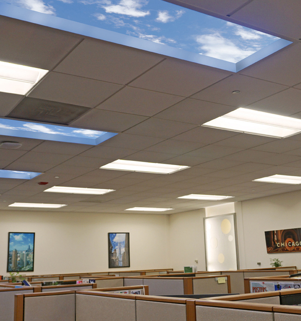 This basement office was outfitted with 2' X 6' Revelation SkyCeiling panels that create a palpable sense of openness, enhancing both the cubicle area, but the employee cafeteria as well.