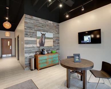 Fresh design elements accent this modern lobby at Vet Partners Edina.