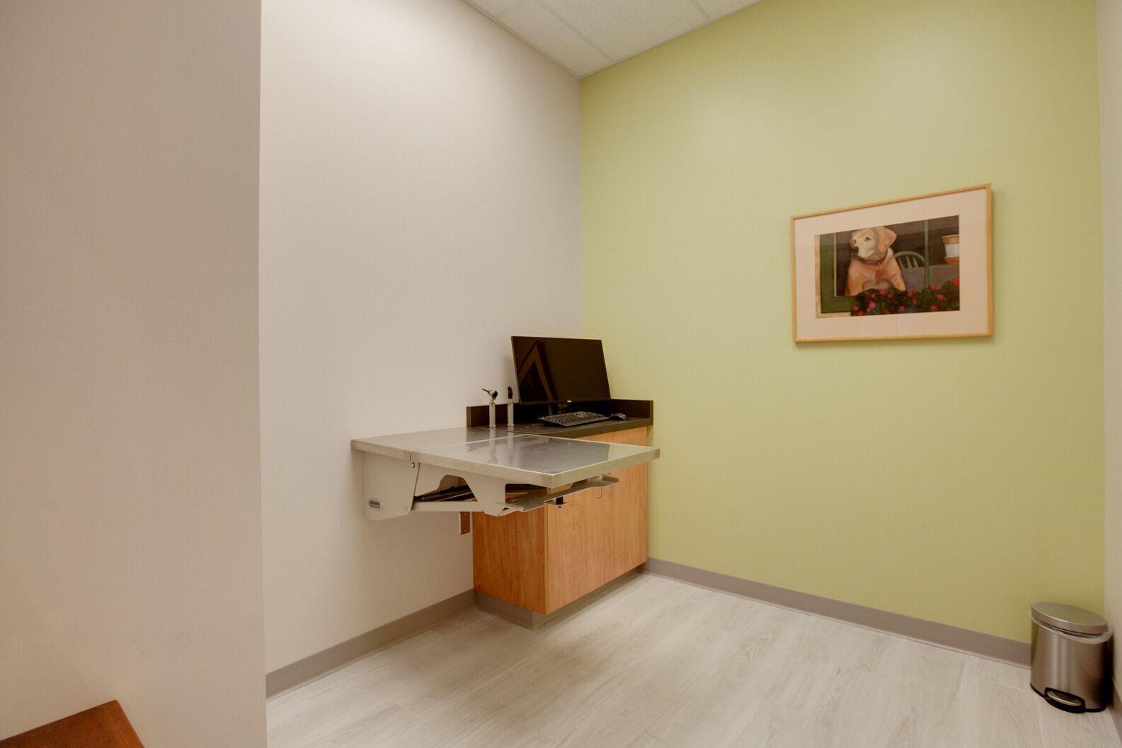 Spacious exam room at Vet Partners Edina constructed by Scott Build.