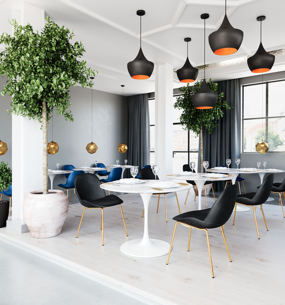 Black Siena Chairs by Zuo Modern in a white space with gold accents
